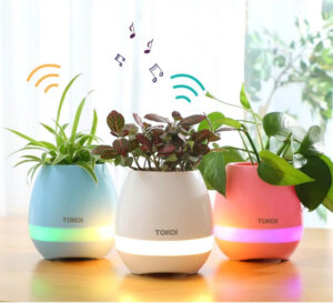 Maceta LED musical para plantas con bluetooth