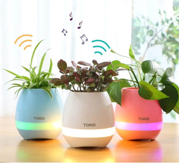Maceta LED musical para plantas con bluetooth